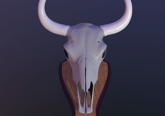 Skull of a Yak on a Medallion