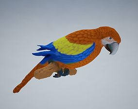 realtime Parrot Low-poly 3D model