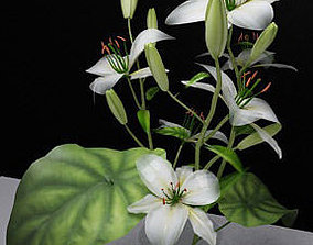 flowers 3D print model