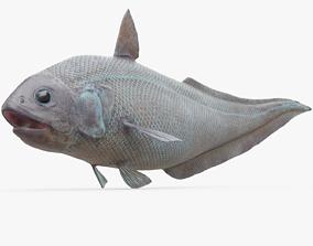 3D model Abyssal Grenadier