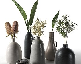 3D model Vases with Plants