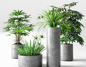 flowerpots 3D model rigged