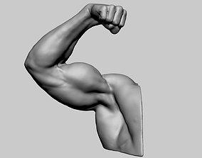 Arm Fist Printable v2