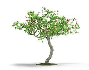 Small Floral Tree 3D