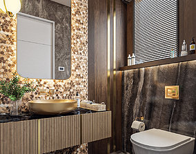 3D Luxury Guest Bathroom