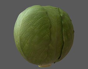 Cabbage 3D asset low-poly