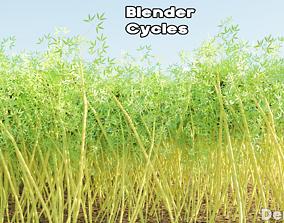 Bamboo PBR Lowpoly 3D asset