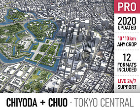 Chiyoda - Chuo - Central Tokyo special wards 3D asset