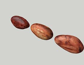 cacao bean 3D