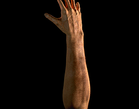 3D Hand detailed