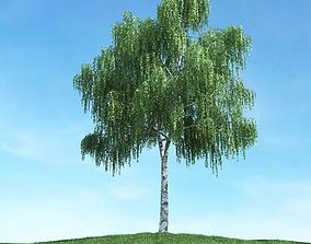 3D model Green Leaf Tree branches