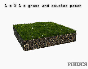Daisies meadow patch 1 3D