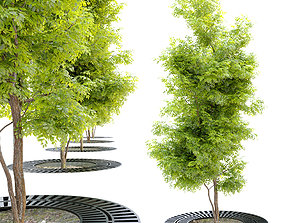 young tree with metal grate 3D