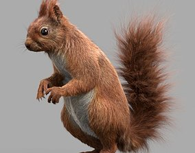 3D Squirrel Red