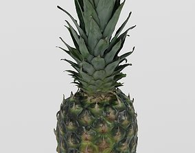 Fruit 3 Pineapple 3D scan PBR 4K textures low-poly