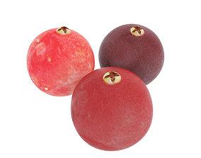 Cranberries 3D