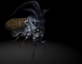 3D asset Insect Collection22 Tree hopper