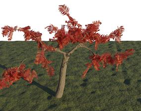 3D asset Free Tree in Blender