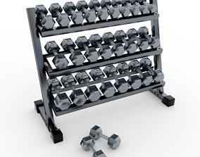 3D model Technogym - Free Weight - Urethane Dumbbells