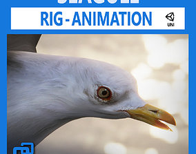 Animated Seagull Unity 3D asset