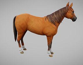 3D asset Horse