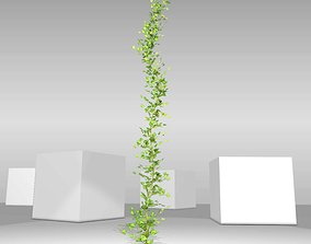 Ivy Vine - Version 4 3D asset low-poly