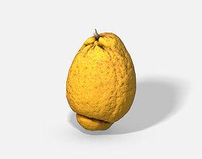 Fruit Citron - Photoscanned PBR 3D asset