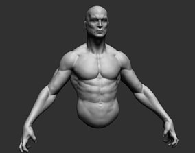 Male Upper Body 02 3D model