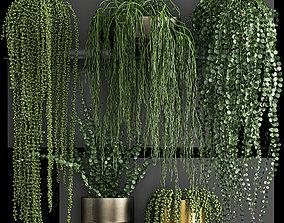 3D Vertical gardening on wall shelves 61