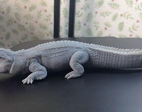 Nile Crocodile 3D printable model