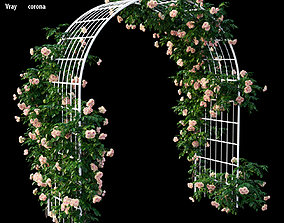 Rose plant set 45 branch 3D