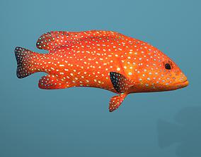 Roving Coral Grouper 3D asset