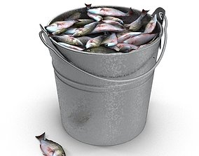 Fish in bucket 3D model