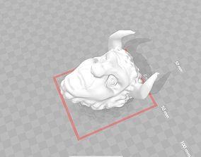Faun Head 3D print model