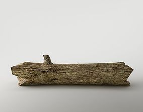 Wood trunk 01 3D asset