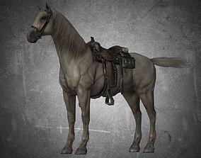 Horse - D11-D12 3D