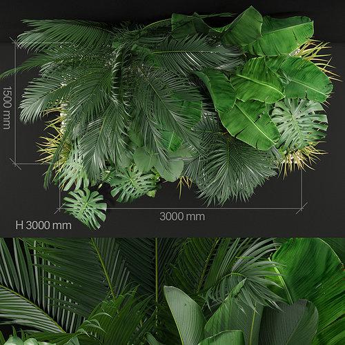 plant_357_03.jpg