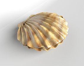 Shell v1 001 3D asset