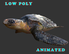 Low Poly Sea Turtle 3D Model - Animated animated