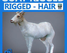 3D Rigged Goat