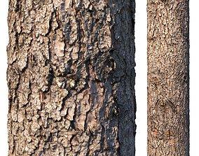Spruce bark material 3D model