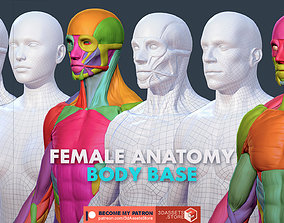 3D model Character - Male Female Anatomy Rigging 2