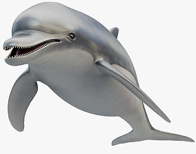 3D model low-poly Dolphin Rigged