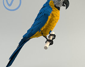 Ara parrot 3D