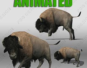 3D asset Buffalo