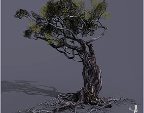3 Leafs Textures For Smart Trees 3D model