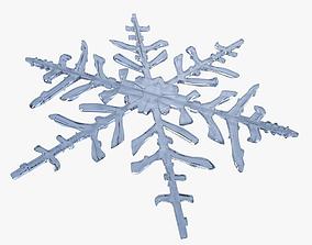 3D snowflake landscape Snowflake