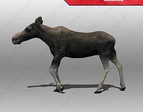 Moose Female Animated 3D model