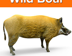 low-poly Wild Boar 3d Model
