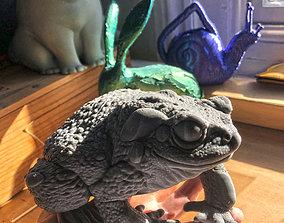 Bufo Alvarius - Sonoran Desert Toad 3D printable model